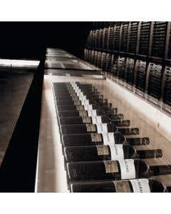 Cata virtual Bodega Ramón Bilbao